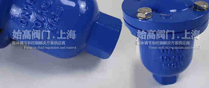 碳钢WCB内螺纹单口排气阀实物2